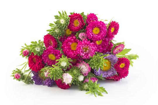 Beautiful Bouquet of Fresh Aster