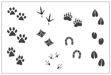 Animals footprints- cat paw, dog paw, bear paw, birds- chicken feet, duck feet, horseshoe, artiodactyls hoofs- deer,antelope,sheep,giraffe,goat, cow,llama, elk, frog feet. Isolated illustration vector