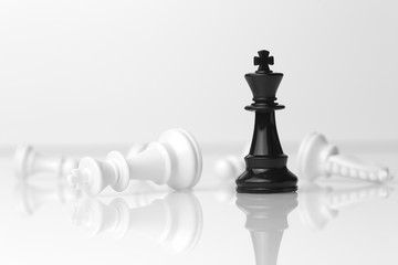 Checkmate - Black wins White loses, and other pieces