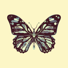 butterfly in zentagle style