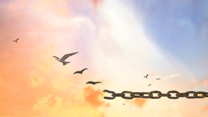 Transform concept: Silhouette of bird flying and broken chains at sunset background
