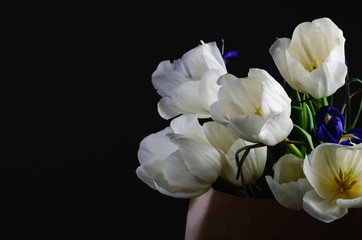 bouquet of a white tulips and blue irises in the paper bag on a