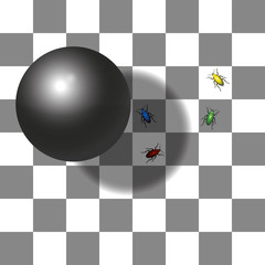 Optical shadow illusion - the two squares with the red and the green beetle are the same shade of gray - believe it.