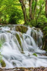 Beautiful waterfall at summer Plitvice Lakes National Park, Croatia, vertical nature background