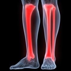 Human Body Bone Joint Pains (Tibia and Fibula joints)