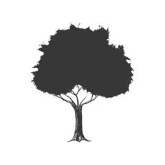 Nature concept represented by tree silhouette icon. Isolated and flat illustration