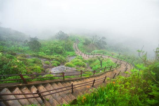 Way down from Adam's Peak, Sri Lanka
