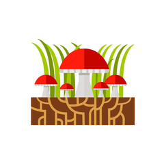 Mycelium and Mushrooms Icon