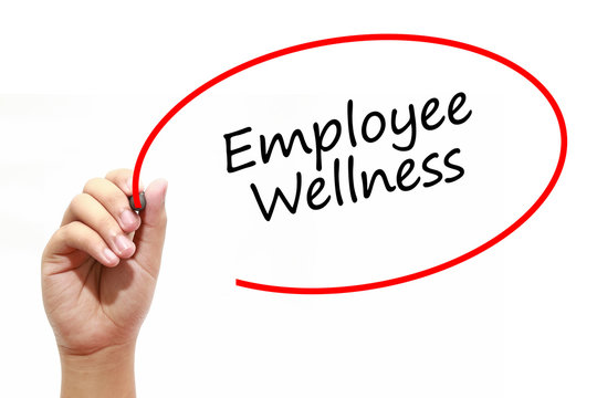 Man Hand writing Employee Wellness with marker on transparent wipe board. Business, internet, technology concept.