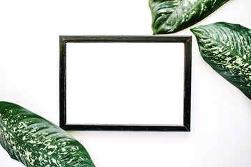 Empty photo frame and green leaves isolated on white. flat lay, top view.