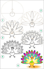 Page shows how to learn step by step to draw a peacock. Developing children skills for drawing and coloring. Vector image.