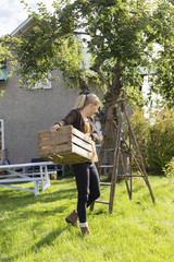 Sweden, Sodermanland, Jarna, Woman carrying crate of apples