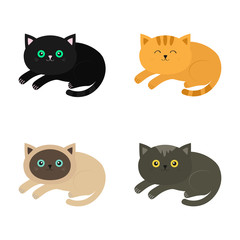 Lying cat icon set. Siamese, red, black, orange, gray color cats in flat design style. Cute cartoon character. Different eyes. White background. Isolated.