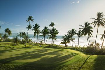 Trinidad and Tobago, Lowlands, Tobago, View of golf course at seaside