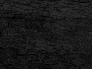 Dark Bark Background