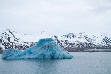 landscape of the svalbard nature