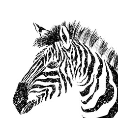 abstract vector zebra silhouette with grunge texture.