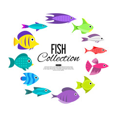 Cartoon fish collection background