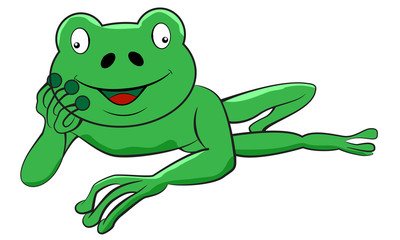Frog laying down