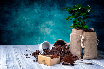 Ground coffee with coffe plants and cup