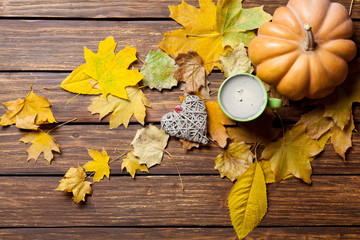 fallen leaves, pumpkin, toy and cup of coffee