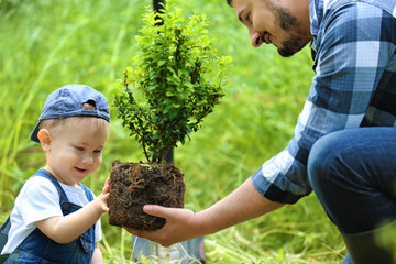 Cute baby boy planting tree with parent in garden