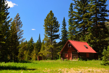 Log Cabin Shack with a Red Roof in the Pine Tree Woods