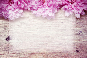 pink flowers on wooden sparkle background