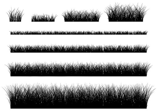 Vector grass isolated on a white background. grass frame.