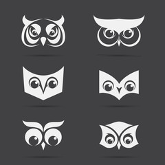 Vector image of an owl face design on black background. Vector o