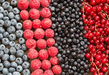 Fresh summer berries. Healthy food