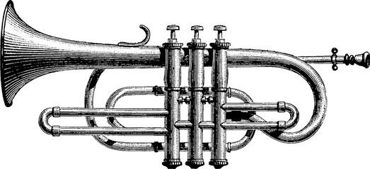 Vintage drawing trumpet