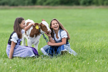 Two Girls having fun with a little Cow