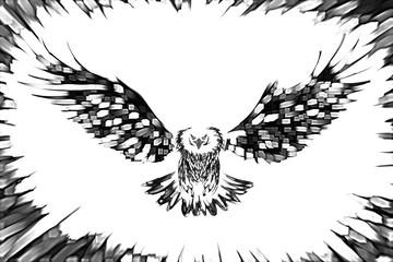 eagle art drawing