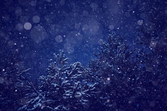night snowfall trees background