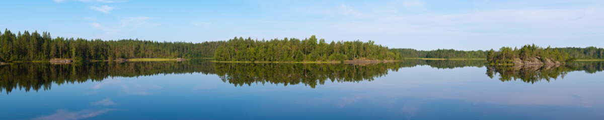 summer landscape in the forest lake
