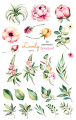 Foral collection with flower,peonies,leaves,branches,lupins,air plant,field bindweed,strawberry and more.Colorful collection with 24 watercolor elements.Set of floral elements.