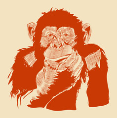 The graphic image of a monkey.Vector eps 10
