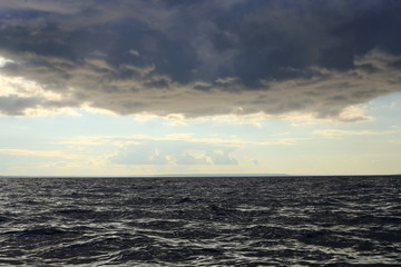 at the bottom of the dark water, dark clouds at the top, in the middle of the bright horizon