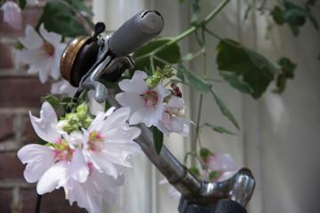 Türaufkleber Blumenhändler Fiets en bloemen