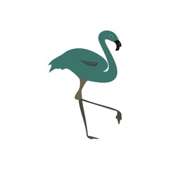 Animal vector logo Flamingo