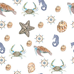 sea background. Pattern seamless, hand painted watercolor elements, seaside
