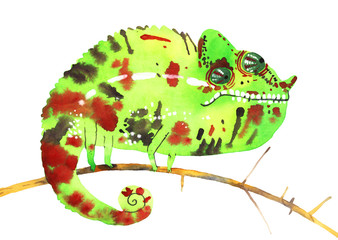 watercolor chameleon, hand painted draw