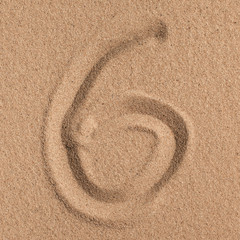Summer. Summer background. Summer accessories, Summer concept . Starfish with sand as background. Sand texture