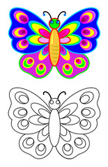 Colorful and black and white pattern butterfly, vector cartoon image.