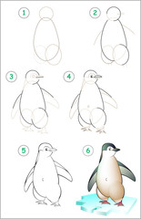 Page shows how to learn step by step to draw a penguin. Developing children skills for drawing and coloring. Vector image.