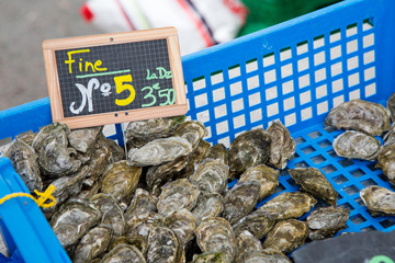 """Oyster of Marenes size number 5 (""""Fine numero 5"""" in French) in local market"""
