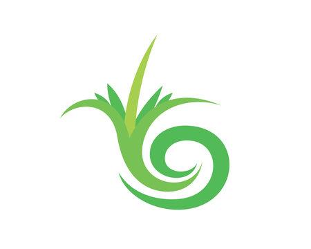 Plant, Harvest and Lawncare