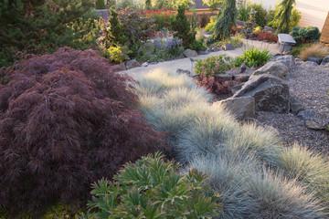 Backyard Perennial Path
