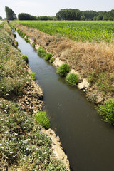 dams and canals for crops irrigate in the Castilla fields, Espa